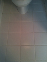 tile-grout cleaning after