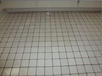 tile cleaning before